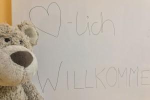 Wichtelstadt-Teddy