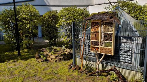 Gartenprojekt Pankebären (3)